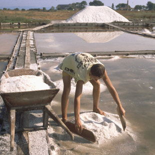 The 2500 year old history of local salt production  can be viewed at the Museum of Salt